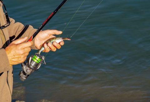 Comment s'initier à la pêche ?